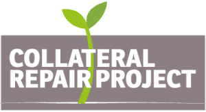 Collateral Repair Project