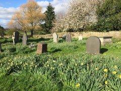 churchyard3