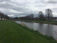 rivertweed